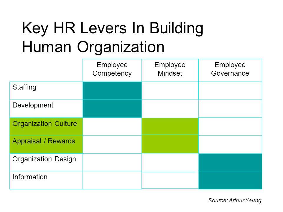 Key HR Levers In Building Human Organization