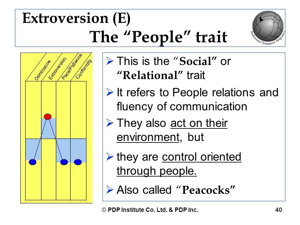 Extroversion (E) The People trait