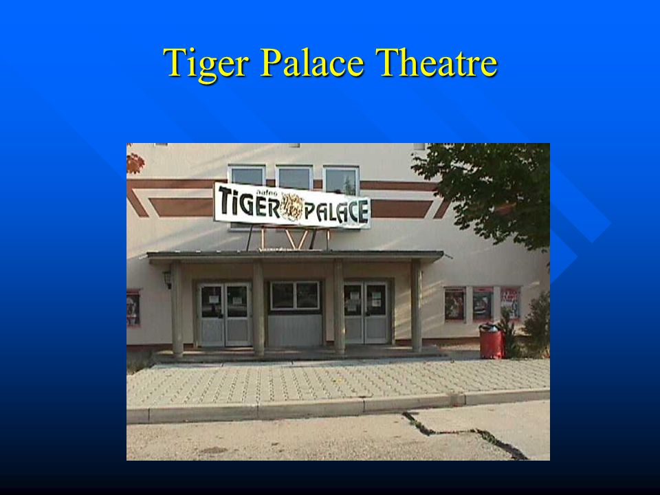 Tiger Palace Theatre