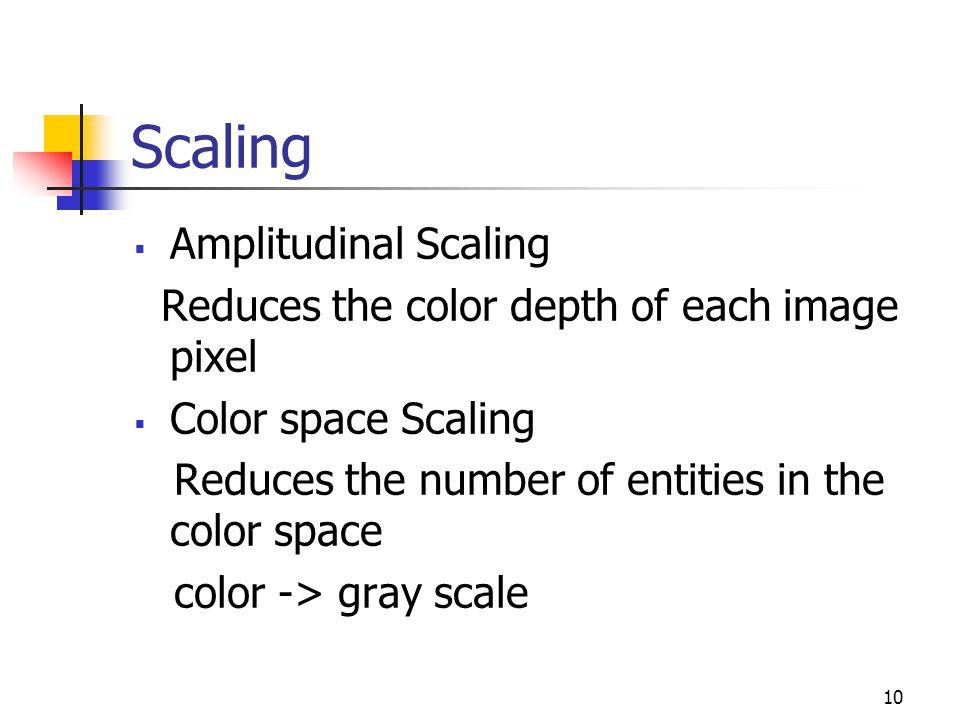 Scaling Amplitudinal Scaling