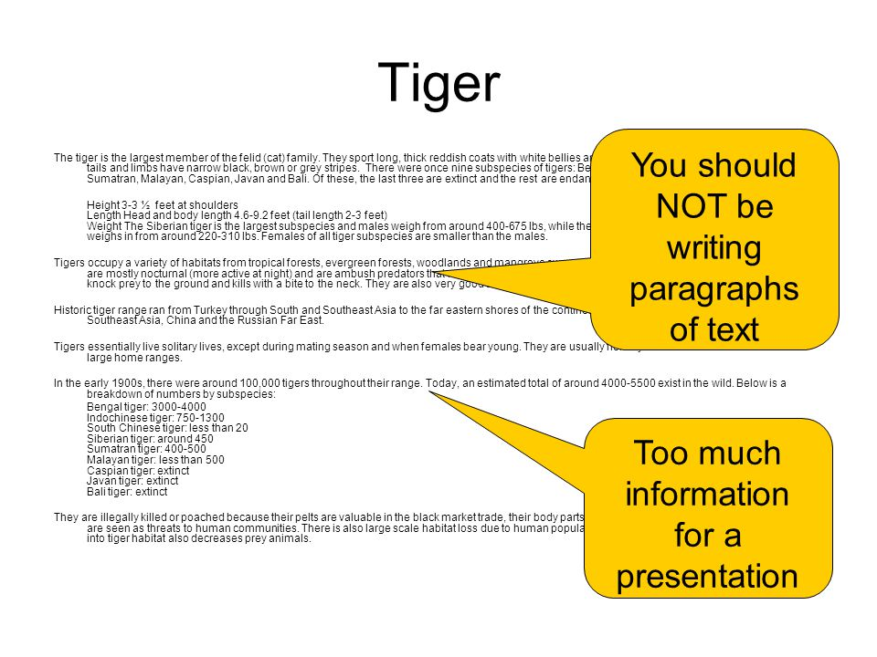 Tiger You should NOT be writing paragraphs of text