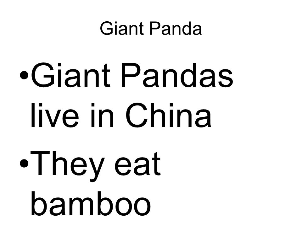 Giant Pandas live in China They eat bamboo