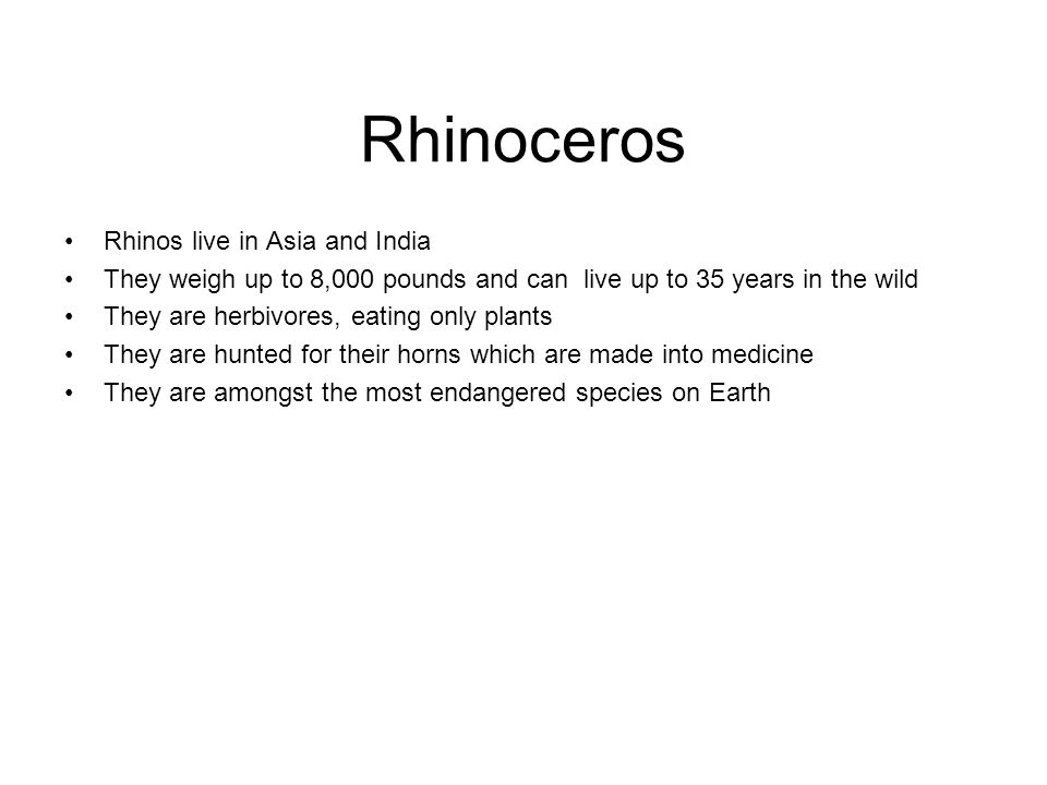 Rhinoceros Rhinos live in Asia and India