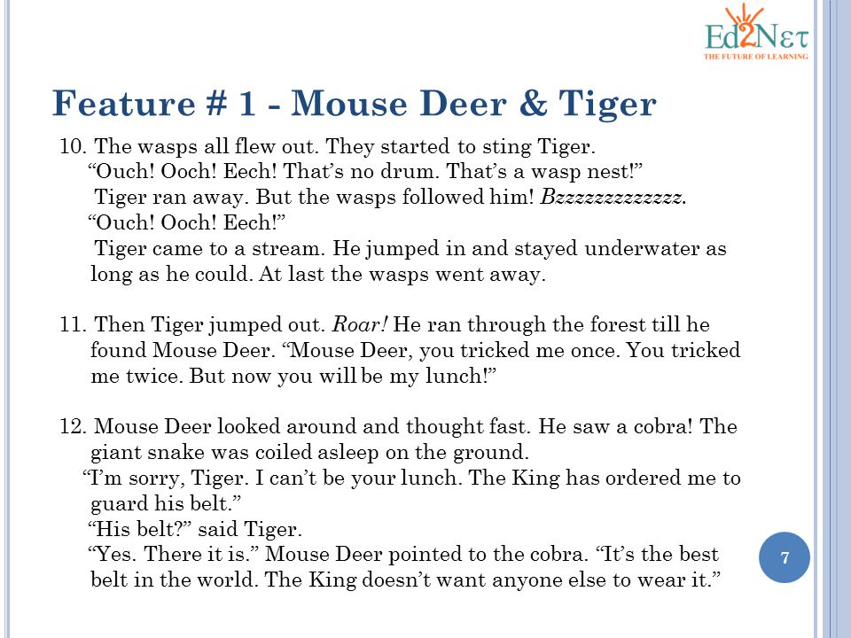 Feature # 1 - Mouse Deer & Tiger