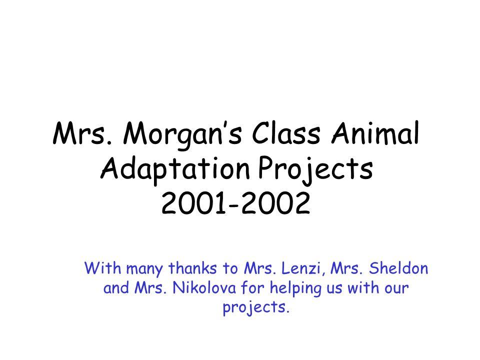 Mrs. Morgan's Class Animal Adaptation Projects 2001-2002