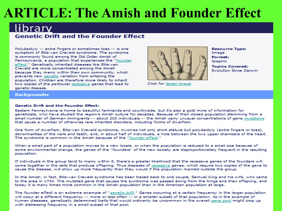 ARTICLE: The Amish and Founder Effect