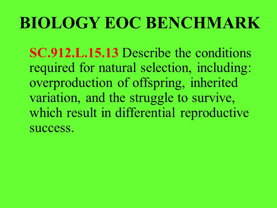 BIOLOGY EOC BENCHMARK