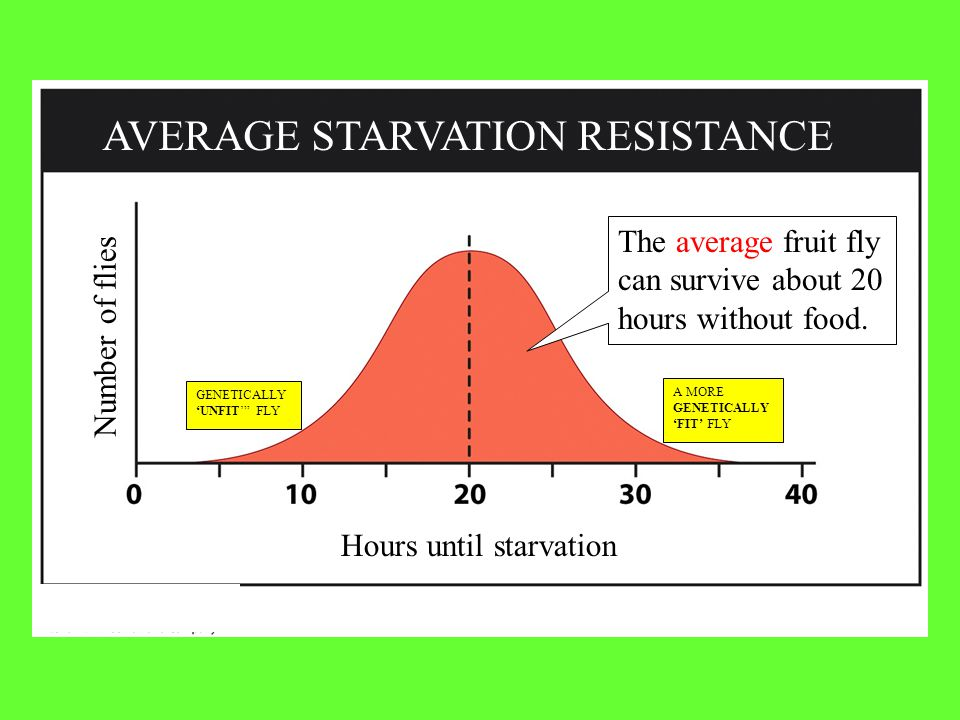 AVERAGE STARVATION RESISTANCE