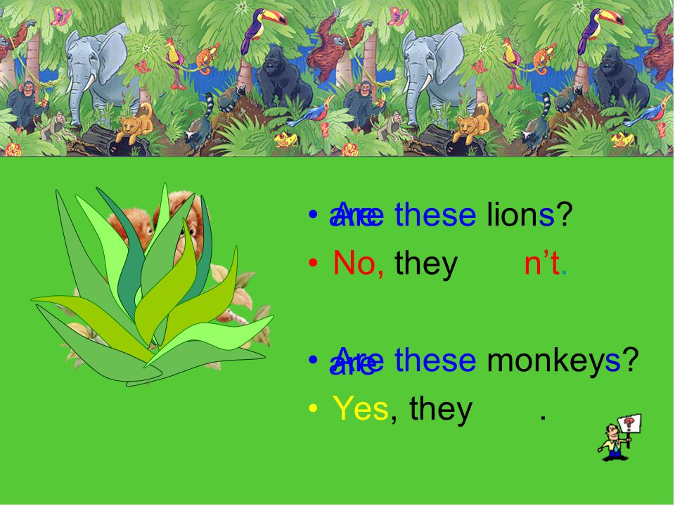 Are these lions No, they n't. Are these monkeys Yes, they . are are