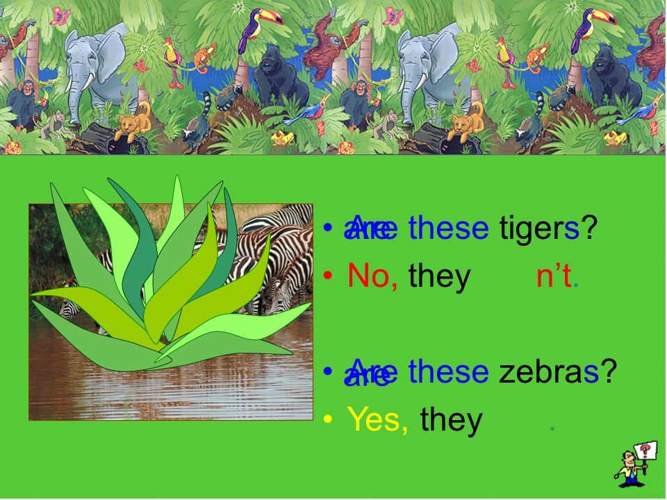 Are these tigers No, they n't. Are these zebras Yes, they . are are