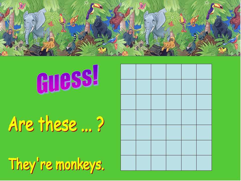 Guess! Are these ... They re monkeys.