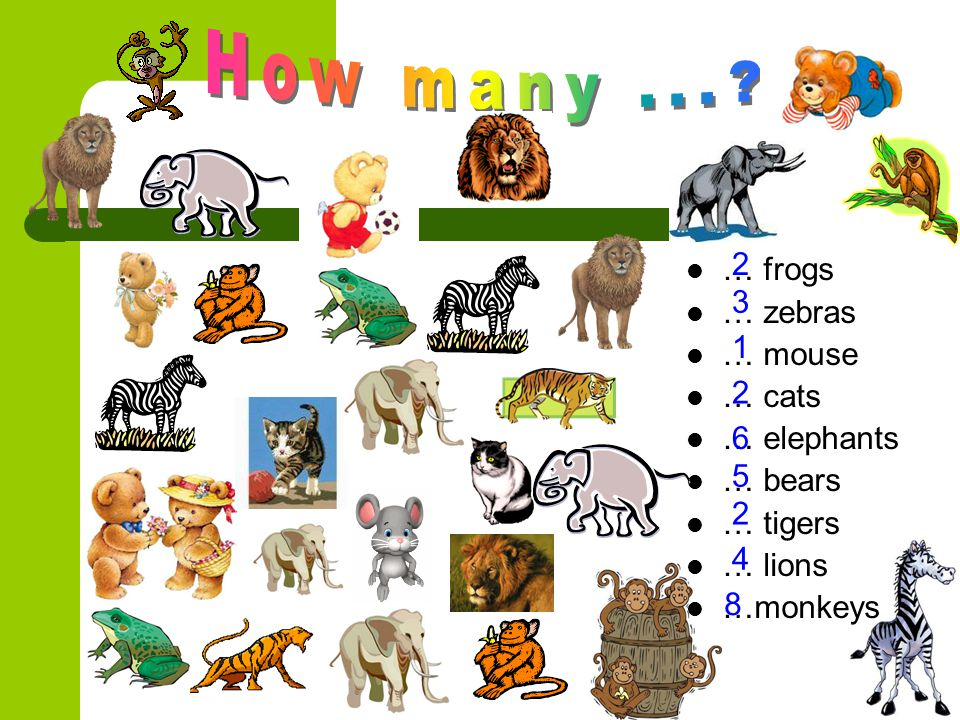 How many ... 2 … frogs … zebras … mouse … cats … elephants … bears