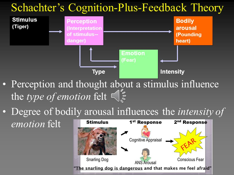 Schachter's Cognition-Plus-Feedback Theory
