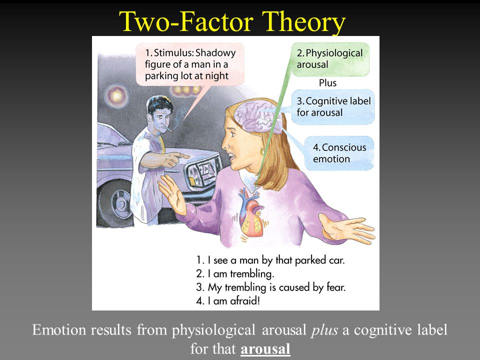 Two-Factor Theory Emotion results from physiological arousal plus a cognitive label for that arousal.