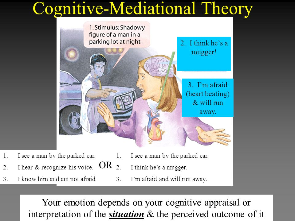 Cognitive-Mediational Theory