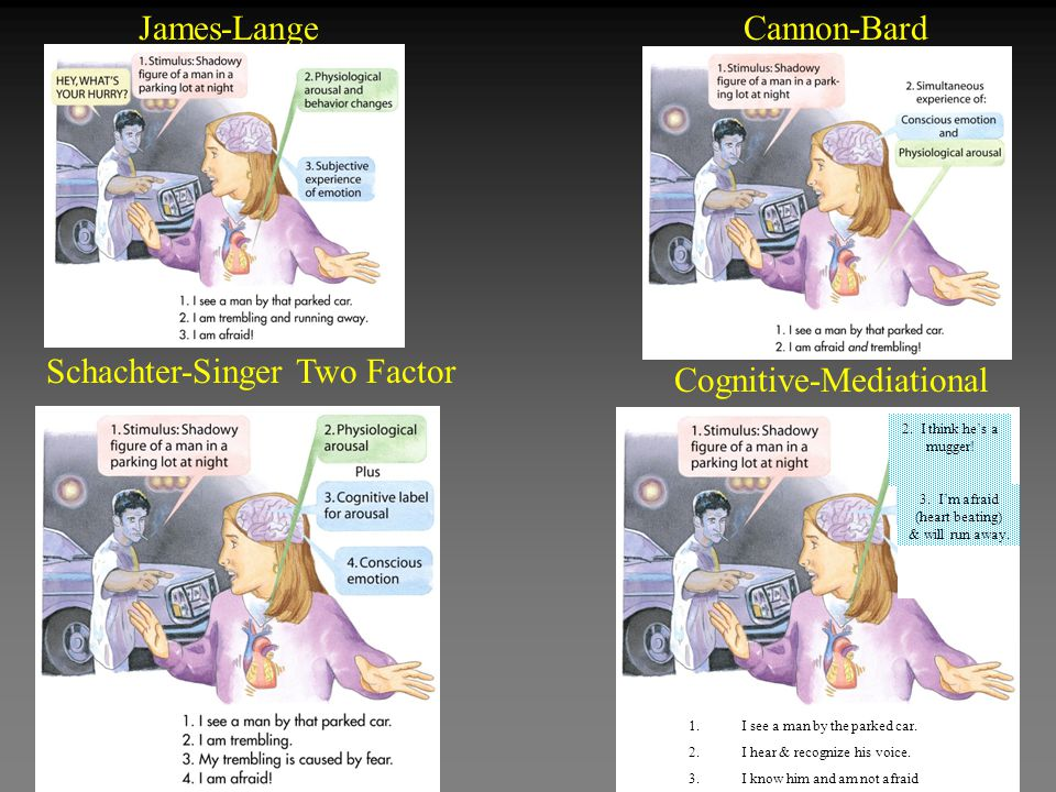 Schachter-Singer Two Factor Cognitive-Mediational