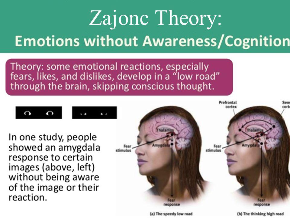 Zajonc Theory: