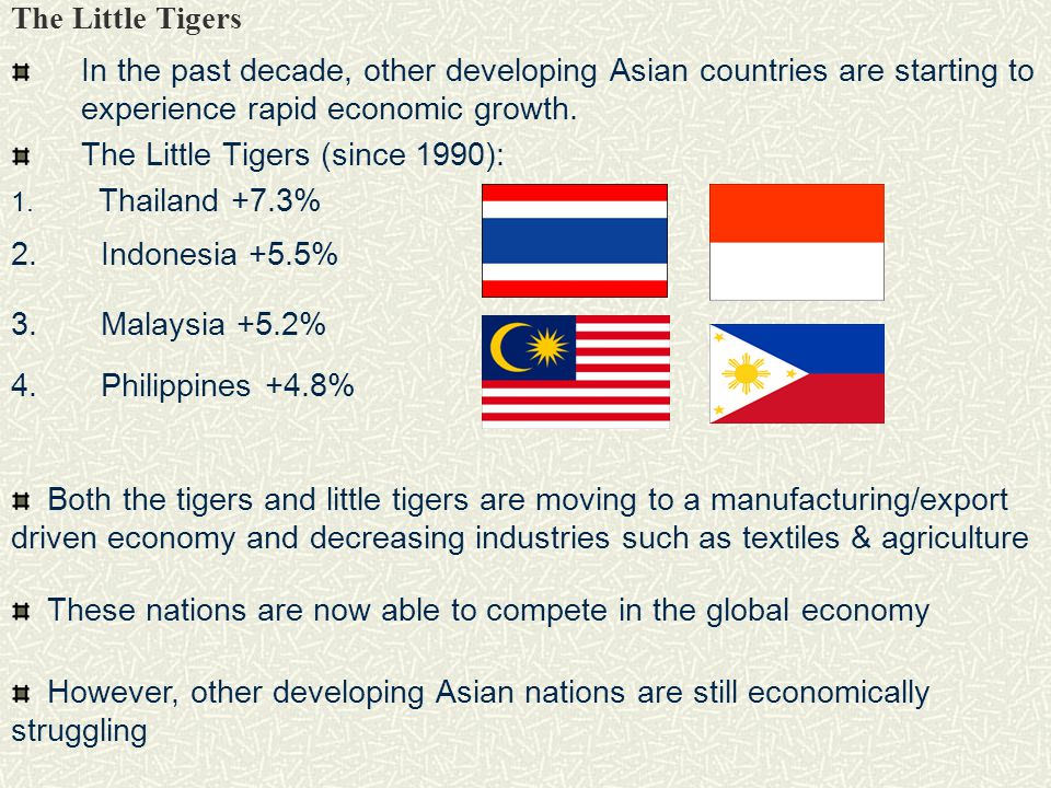 The Little Tigers In the past decade, other developing Asian countries are starting to experience rapid economic growth.