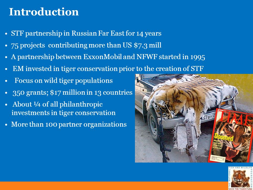 Introduction STF partnership in Russian Far East for 14 years