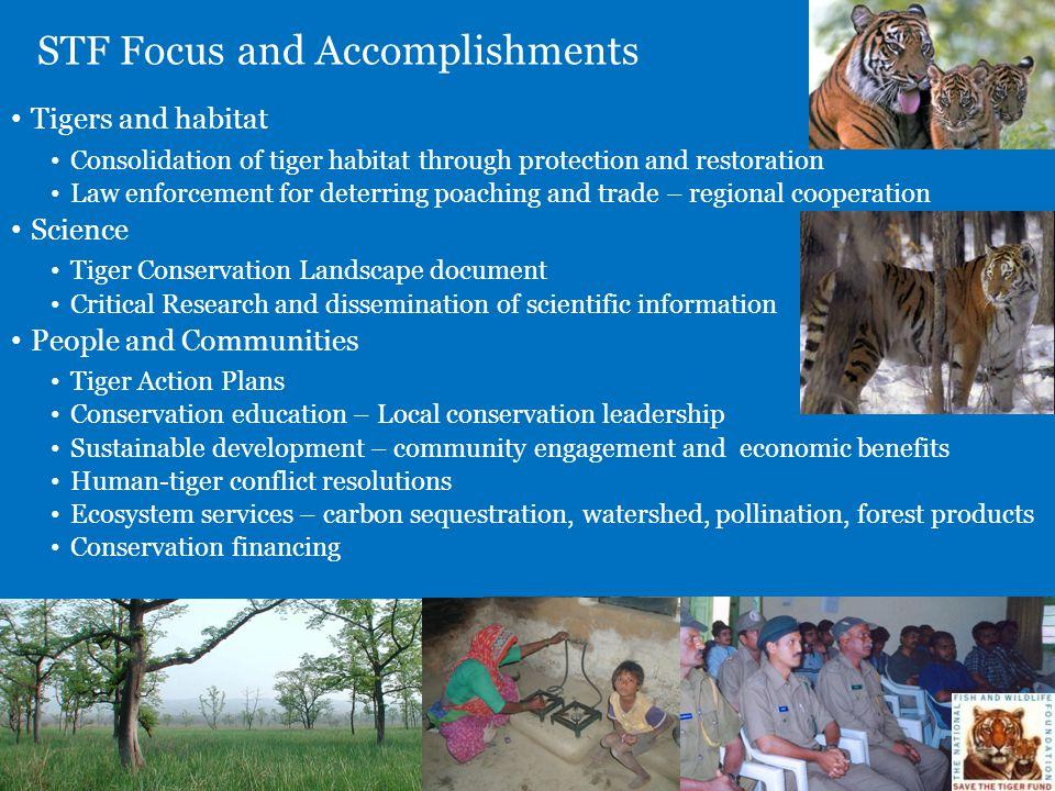 STF Focus and Accomplishments