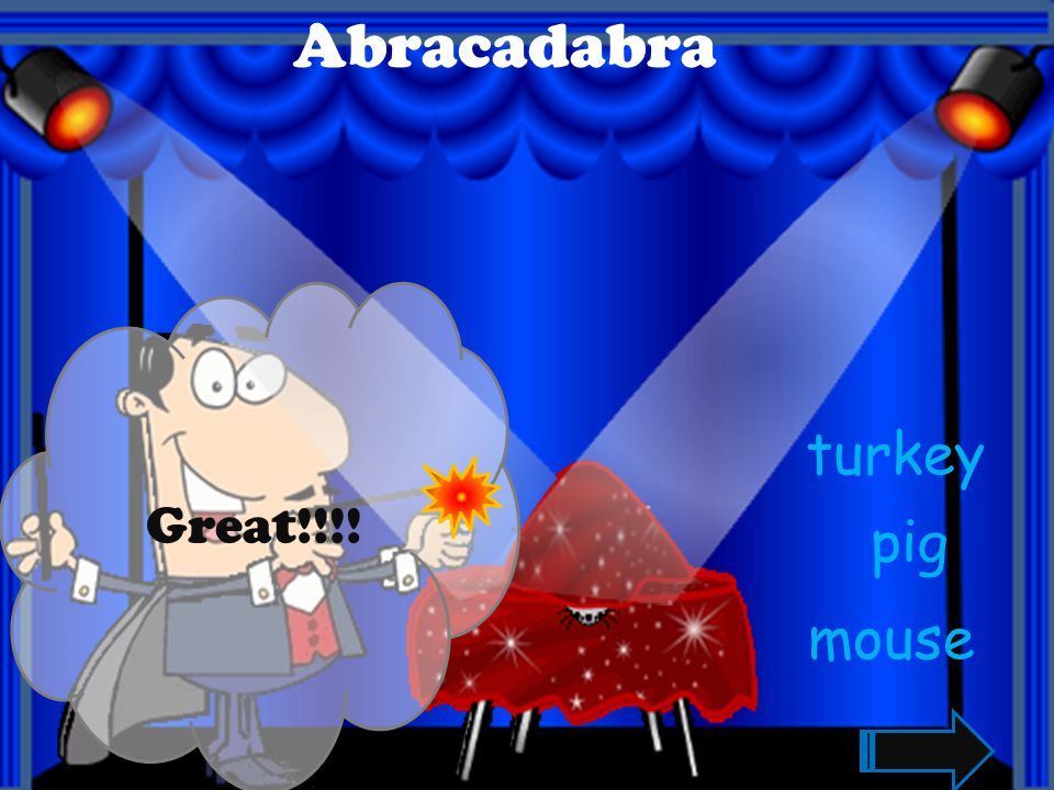 Abracadabra Great!!!! turkey pig mouse