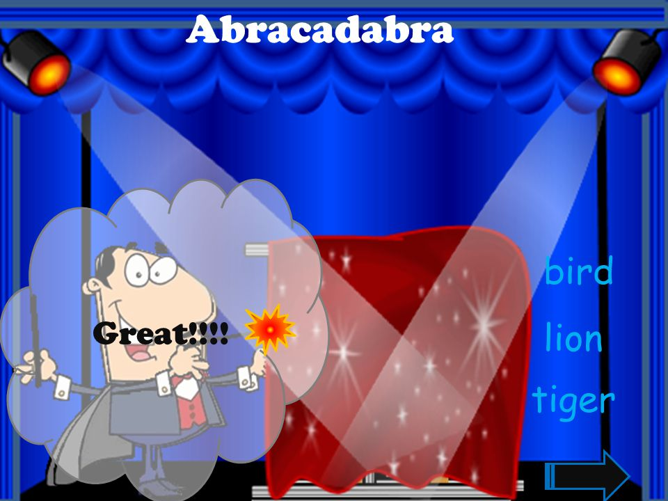 Abracadabra Great!!!! bird lion tiger