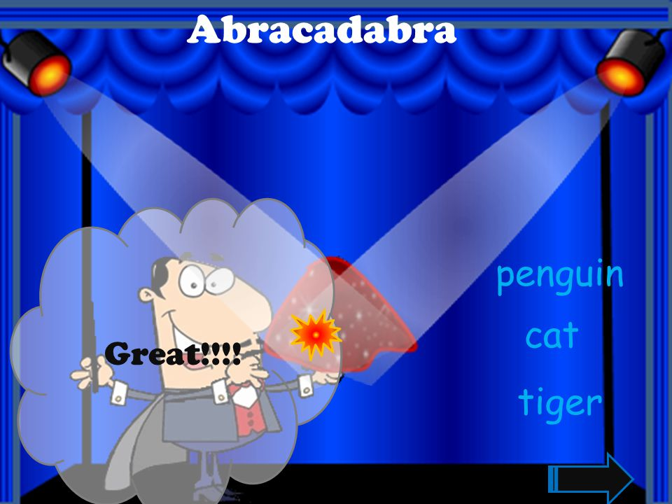 Abracadabra Great!!!! penguin cat tiger