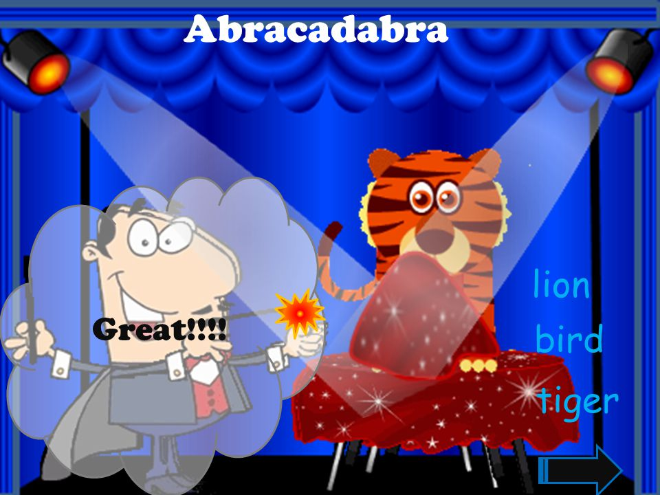 Abracadabra Great!!!! lion bird tiger