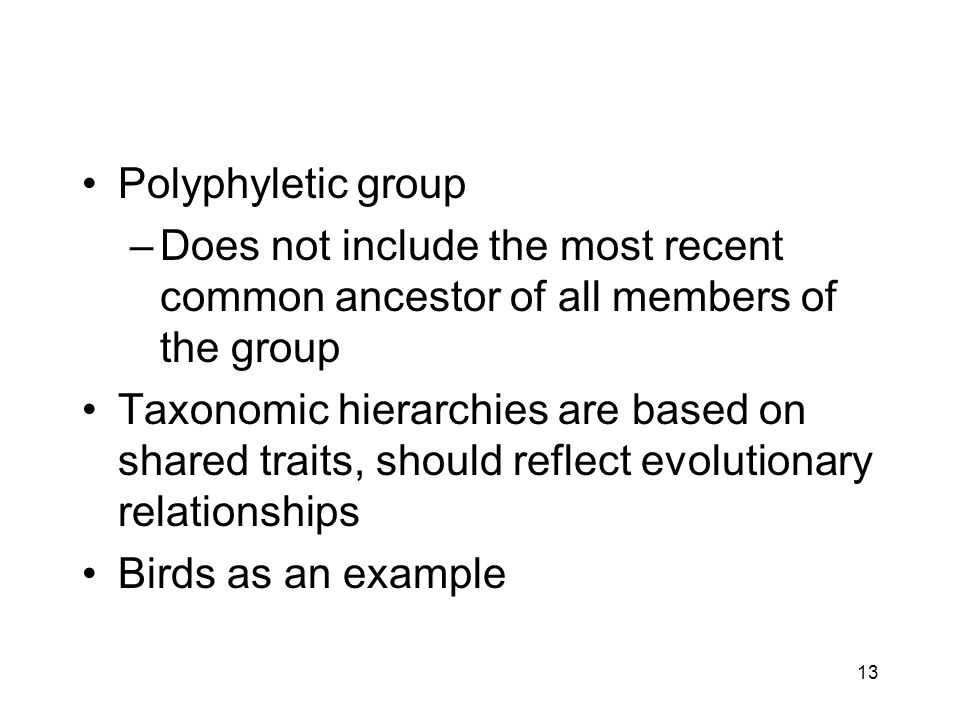 Polyphyletic group Does not include the most recent common ancestor of all members of the group.