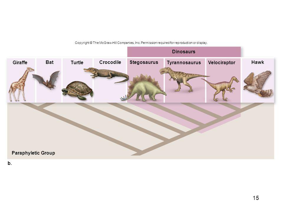 Dinosaurs Giraffe Bat Turtle Crocodile Stegosaurus Tyrannosaurus