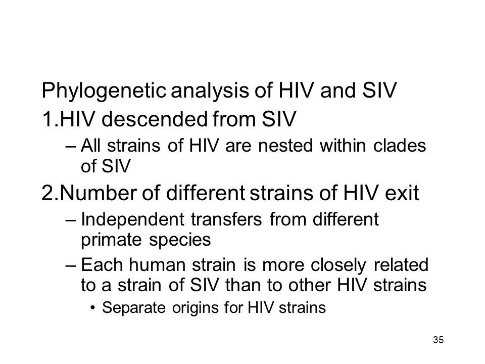 Phylogenetic analysis of HIV and SIV HIV descended from SIV