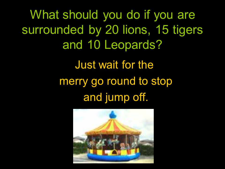 What should you do if you are surrounded by 20 lions, 15 tigers and 10 Leopards