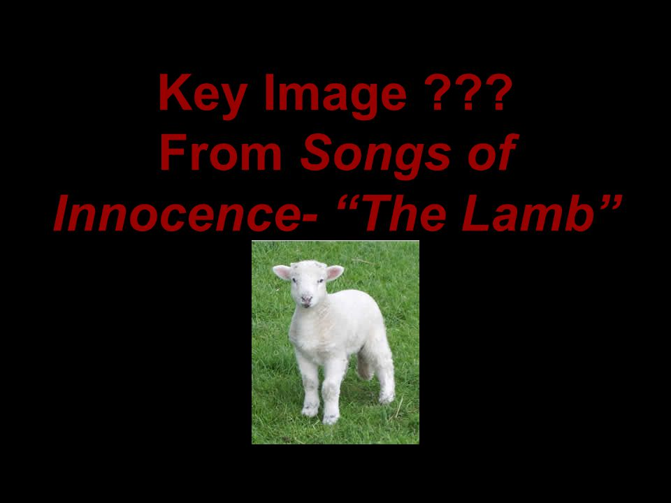 Key Image From Songs of Innocence- The Lamb