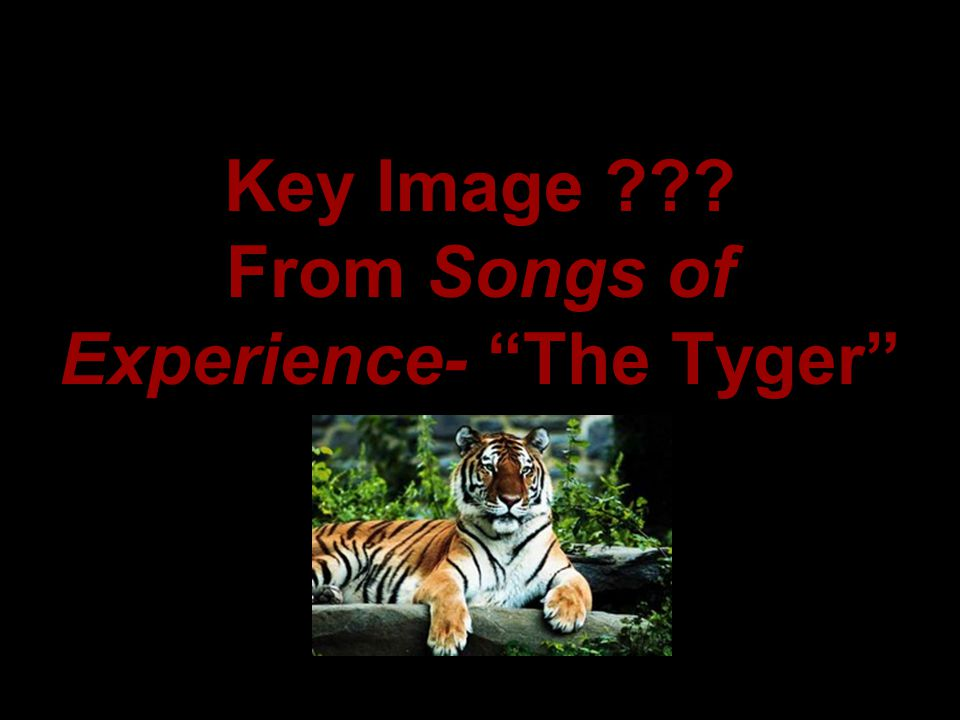 Key Image From Songs of Experience- The Tyger