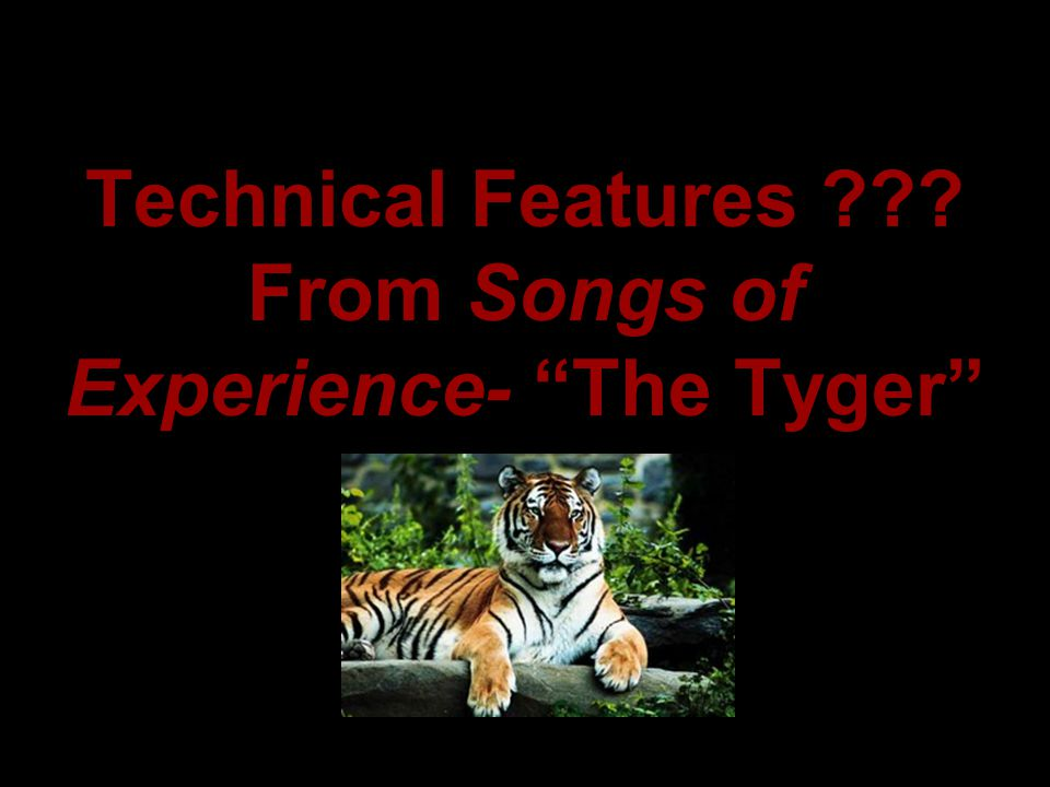 Technical Features From Songs of Experience- The Tyger