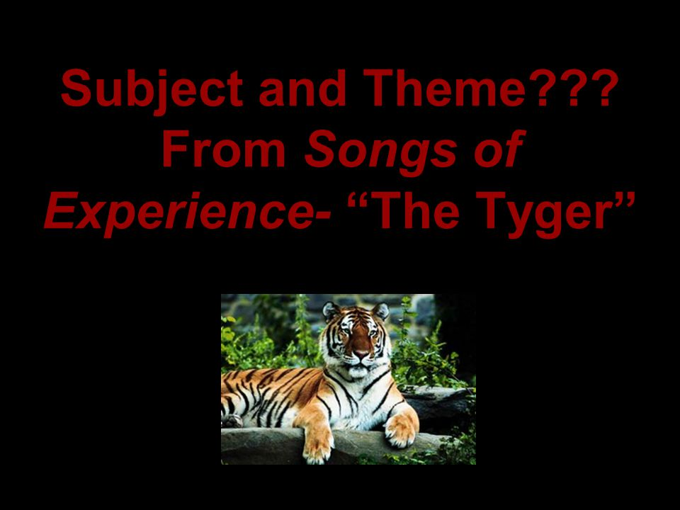 Subject and Theme From Songs of Experience- The Tyger