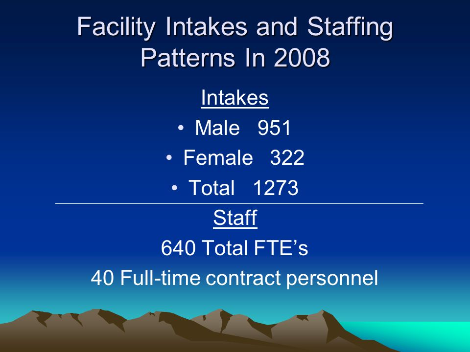 Facility Intakes and Staffing Patterns In 2008