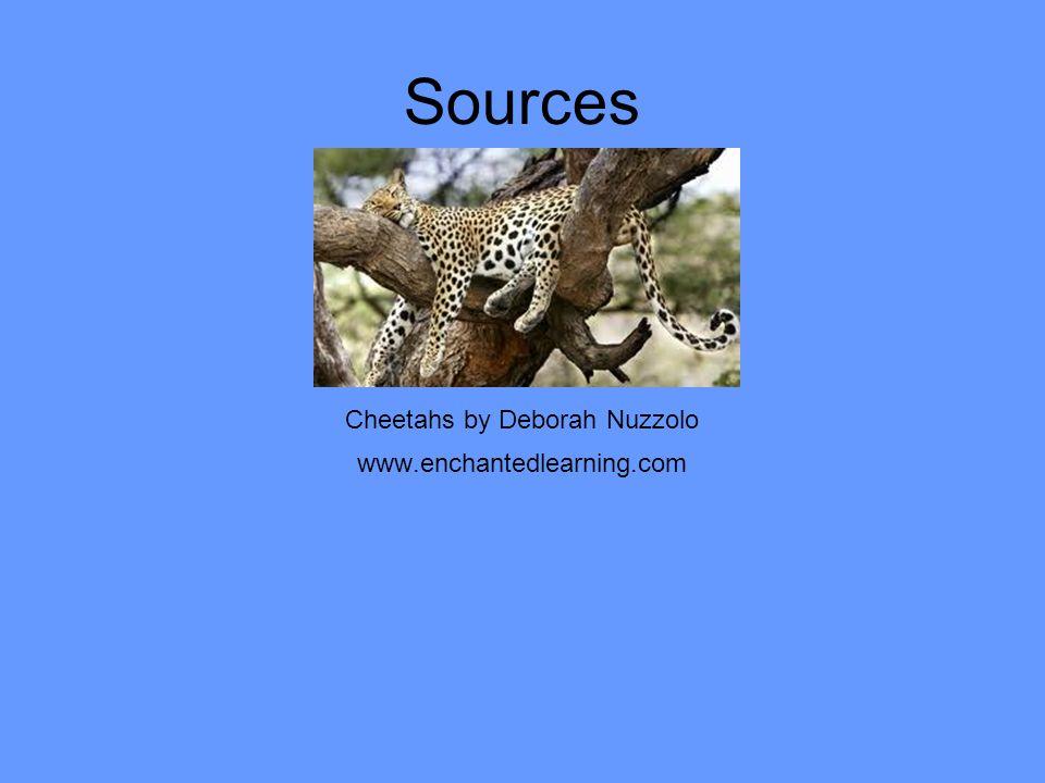 Cheetahs by Deborah Nuzzolo www.enchantedlearning.com