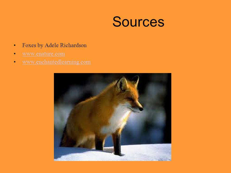 Sources Foxes by Adele Richardson www.enature.com