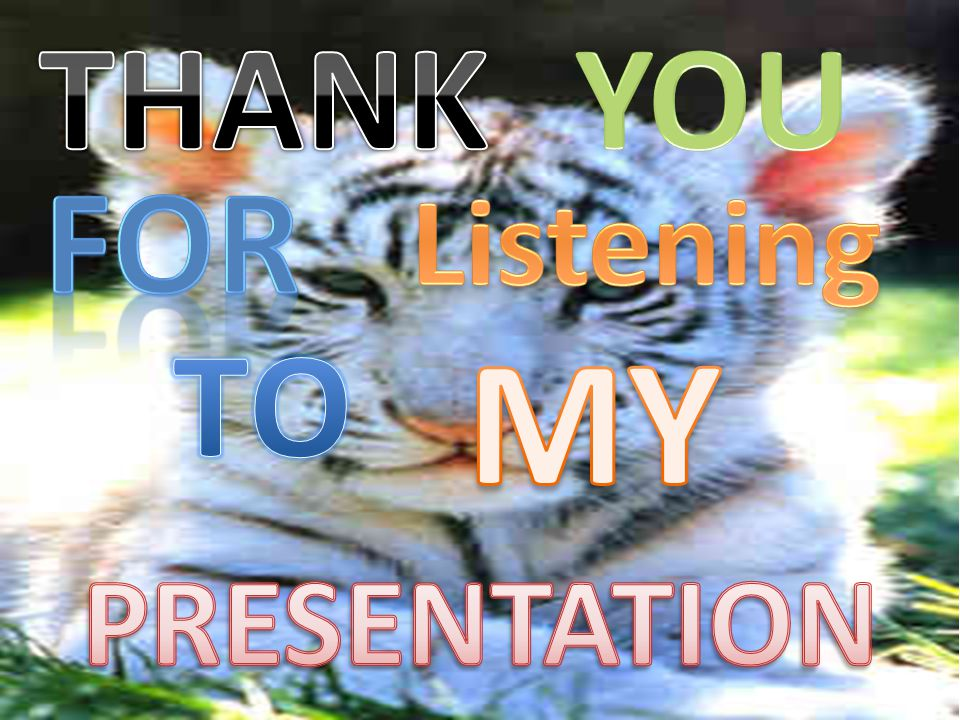 THANK YOU FOR Listening TO MY PRESENTATION