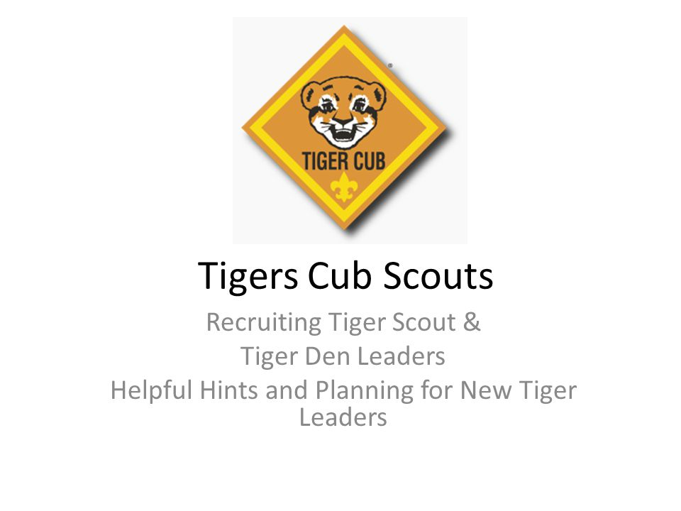 Tigers Cub Scouts Recruiting Tiger Scout & Tiger Den Leaders