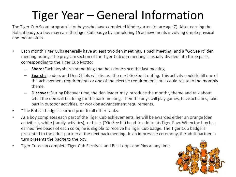 Tiger Year – General Information
