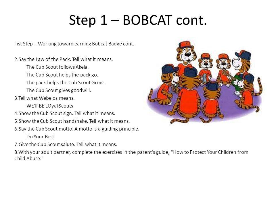 Step 1 – BOBCAT cont.