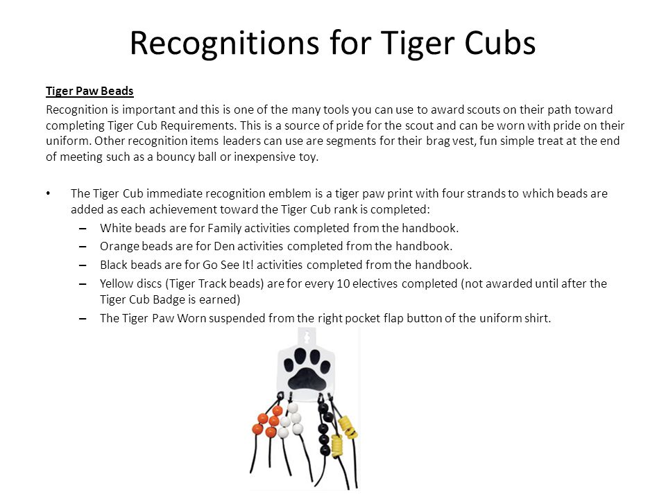 Recognitions for Tiger Cubs