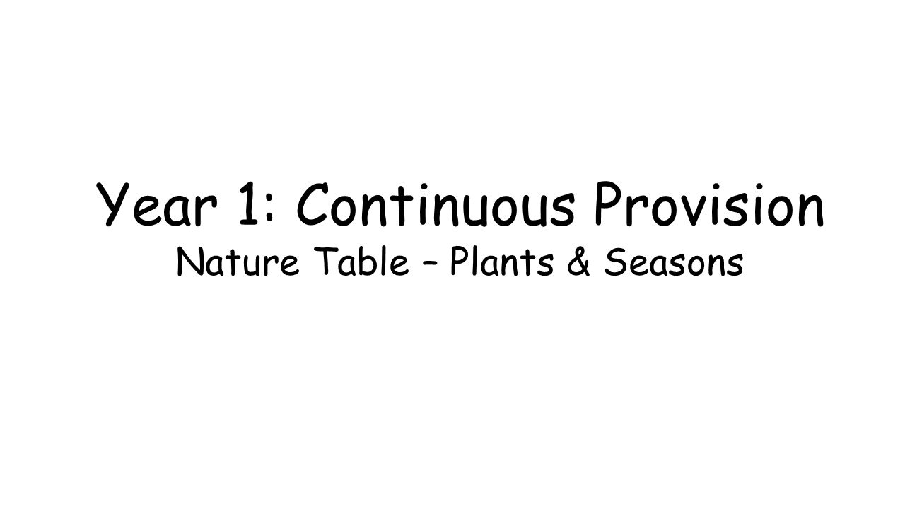 Year 1: Continuous Provision