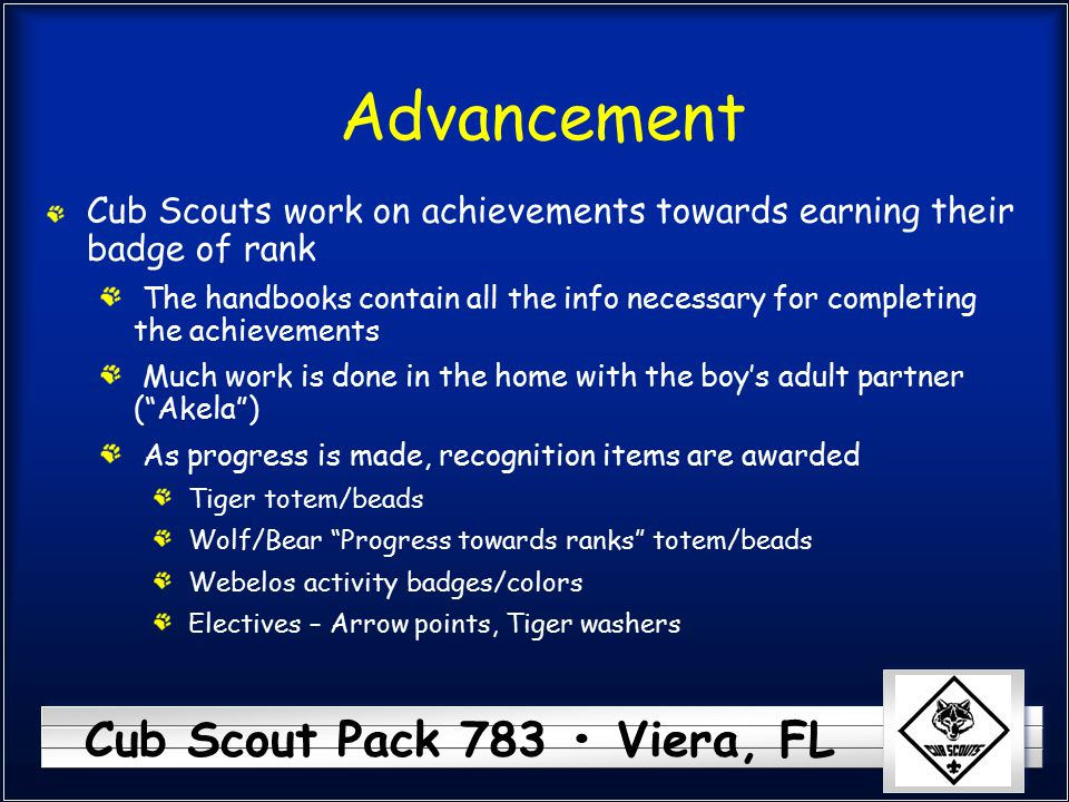 Advancement Cub Scouts work on achievements towards earning their badge of rank.