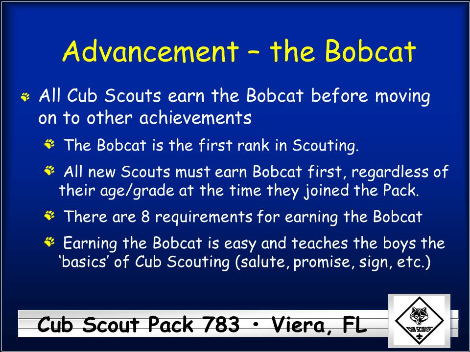 Advancement – the Bobcat