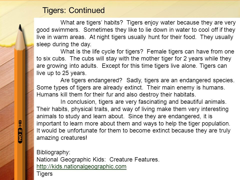 Tigers: Continued