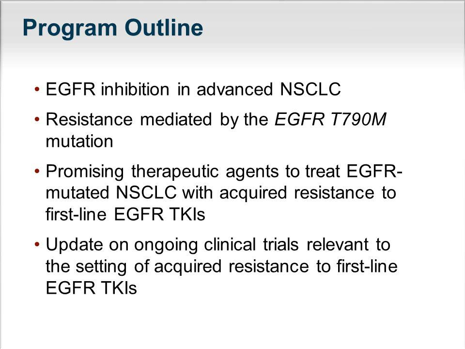 Program Outline EGFR inhibition in advanced NSCLC