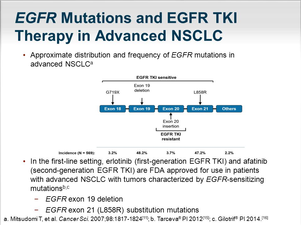 EGFR Mutations and EGFR TKI Therapy in Advanced NSCLC
